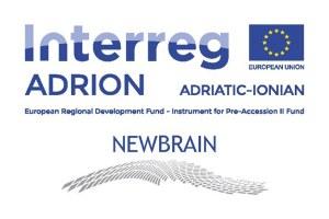 Conferenza finale del progetto europeo Newbrain