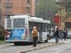 autobus-ferrara.jpg