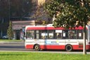 autobus_seta.jpg