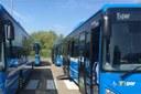 Prontobus di Pianura, il servizio è confermato fino al 2022