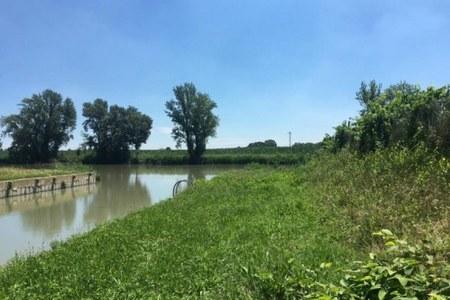 Turismo fluviale, inaugurato a Baura (Fe) un nuovo pontile lungo il canale navigabile