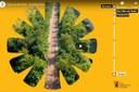 La Ciclovia del Sole sull'ex ferrovia Bologna-Verona verrà inaugurata il 13 aprile