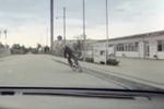 Danimarca_video